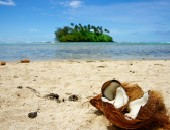 Cook Islands, coconut