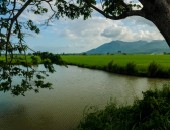 Philippines, countryside