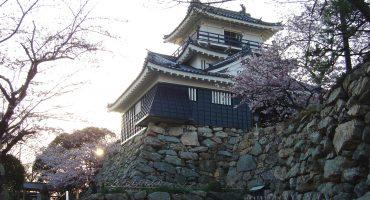 Japan: welcome spring at a sakura festival