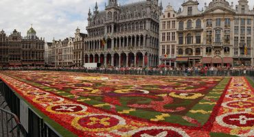 Brussels rolls out the carpet… of flowers