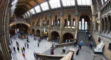 September 25th is National Museum Day in USA