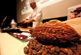 Eurochocolate in Perugia: calling all chocoholics