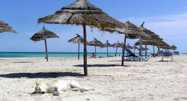 Project Tunisia: 10 million tourists wanted