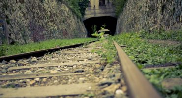 Lost in Paris: on the tracks of Petite Ceinture