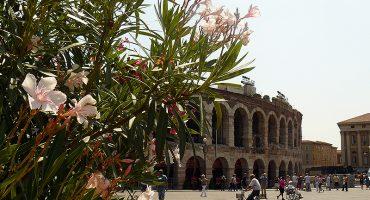 Like a local: Verona