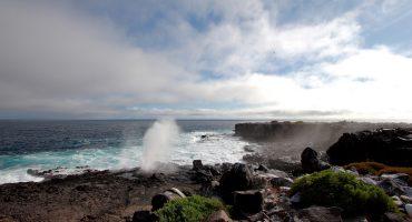 Galapagos cruises: top tips