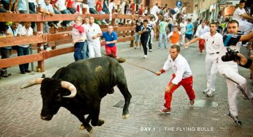Pamplona-style bull runs to head to USA