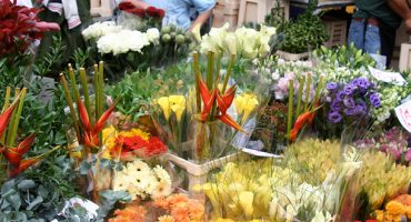 Blooming good: Top 7 flower markets