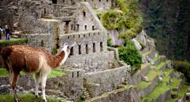 Incredible Machu Picchu
