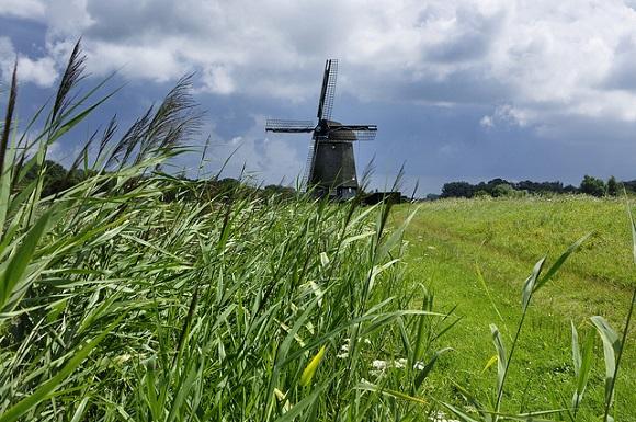 Het Twiske windmill