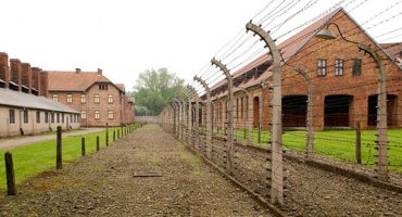 Auschwitz visitor number growth prompts pre-booking