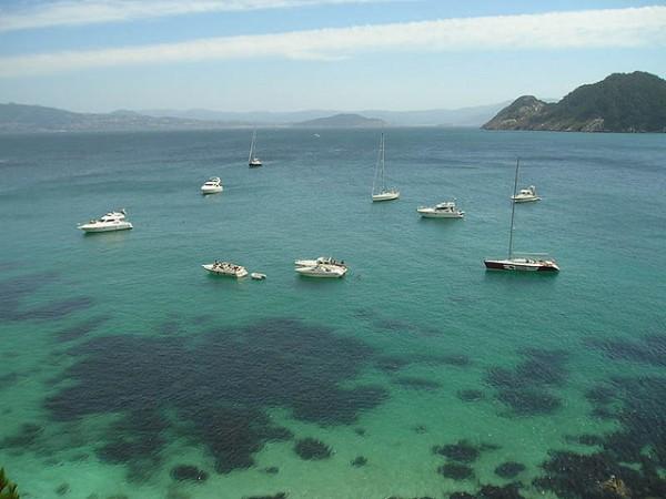 cies-boats