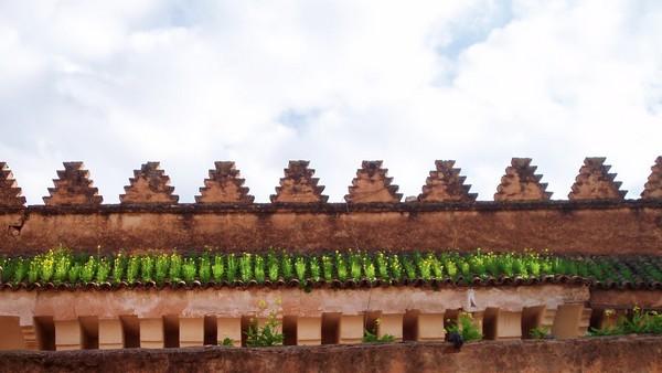 marrakesch-roof